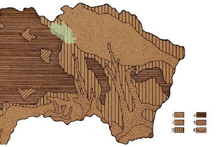 Rozšírenie vegetácie v preboreálnom období